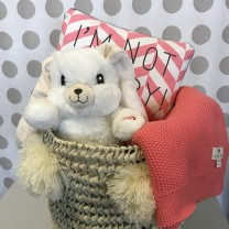 Baby gift basket -Light-up Bunny