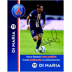 peluche-psg-di-maria-ours-gaston-20cm-photo-dedicacee