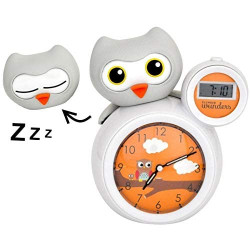 Alarm clock indicator - Olly