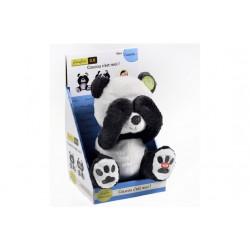 Coucou - Panda